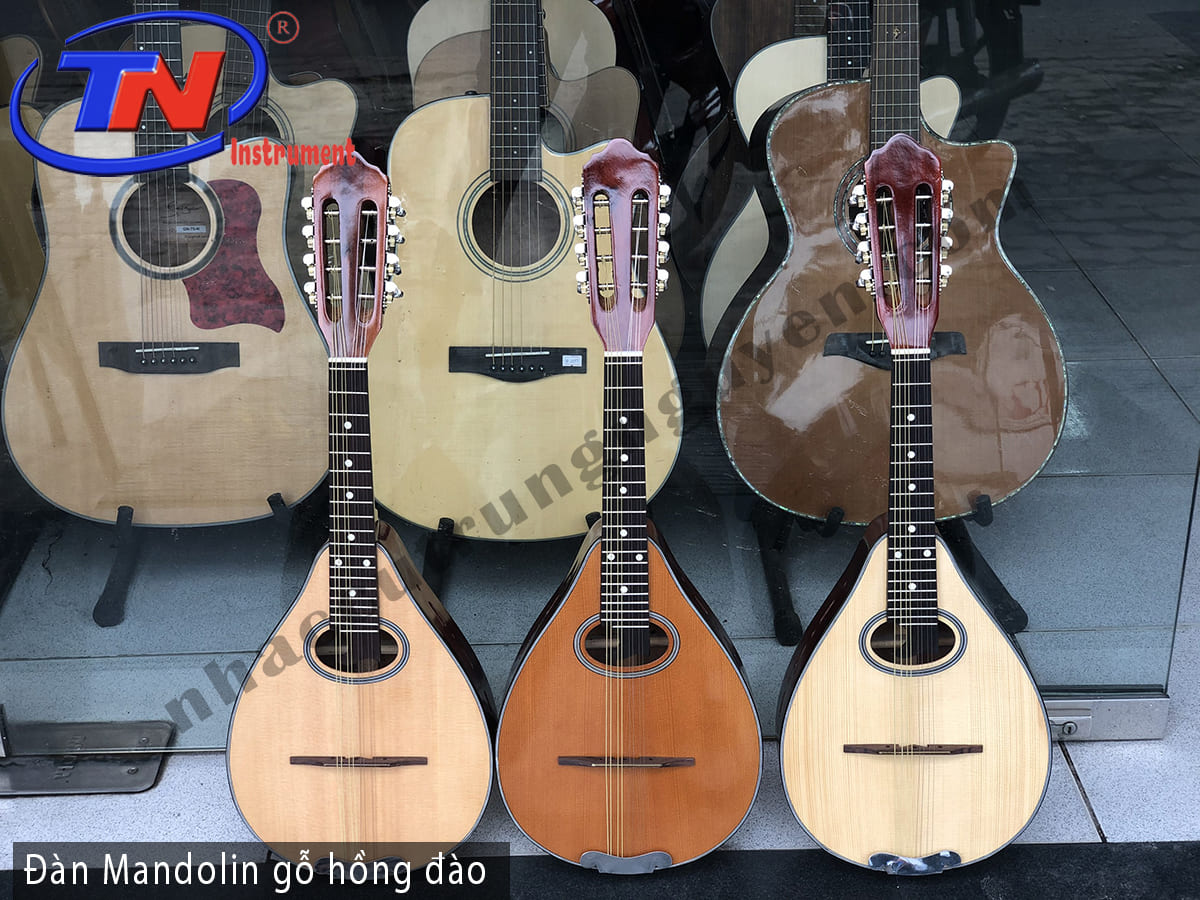 Đàn Mandolin gỗ hồng đào. Nhạc cụ Trung Nguyên Chuyên Nhạc cụ